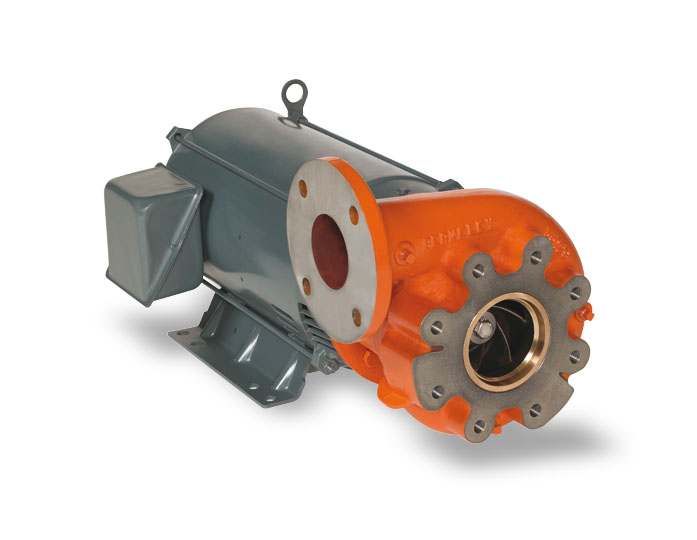 Berkeley Pumps Motor Drive Series